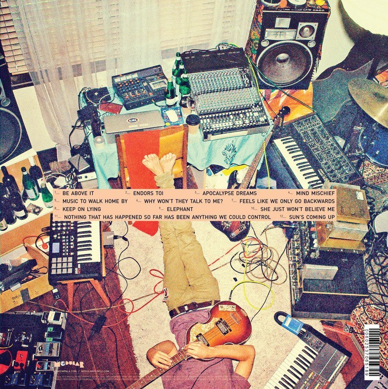 Help me name the gear in this photo! (Tame Impala - Lonerism